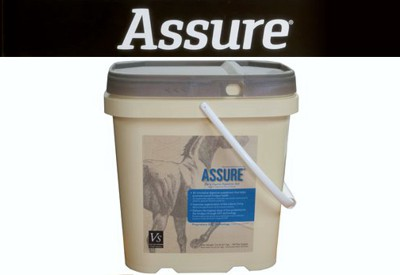 Assure Horse Health Products from Holistic Horsekeeping