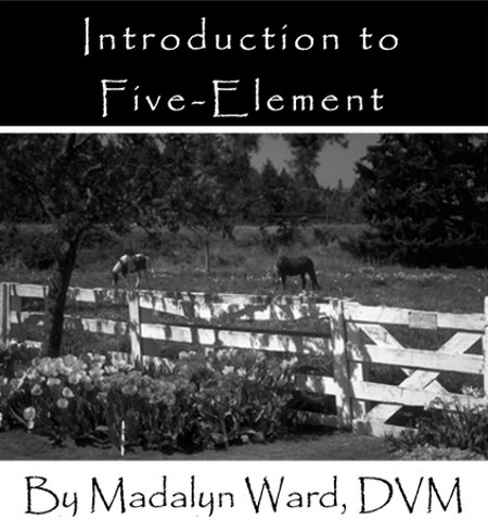 Horse Types and Temperaments: The Five Types eBook