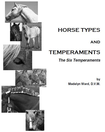 Horse Types and Temperaments: The Six Temperaments eBook
