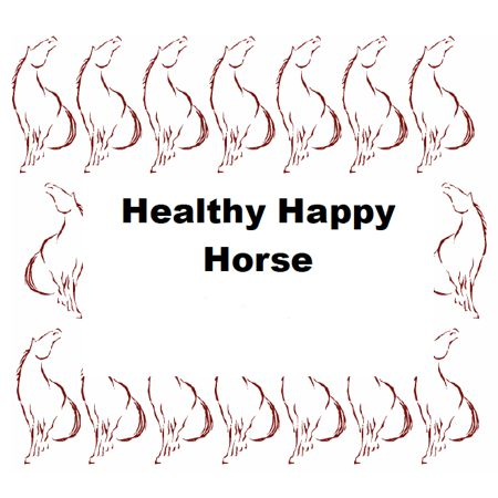Healthy Happy Horse Home Study Course