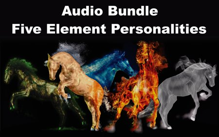 Audio Bundle: Five Element Personalities MP3 File