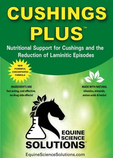 Cushings Plus - 80 doses
