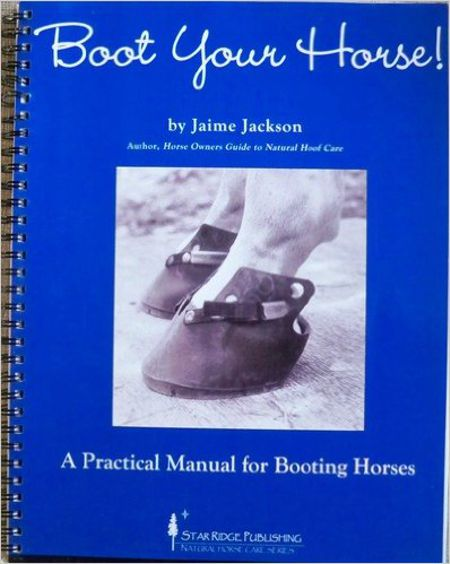 Guide to Booting Horses for Horse Care Professionals