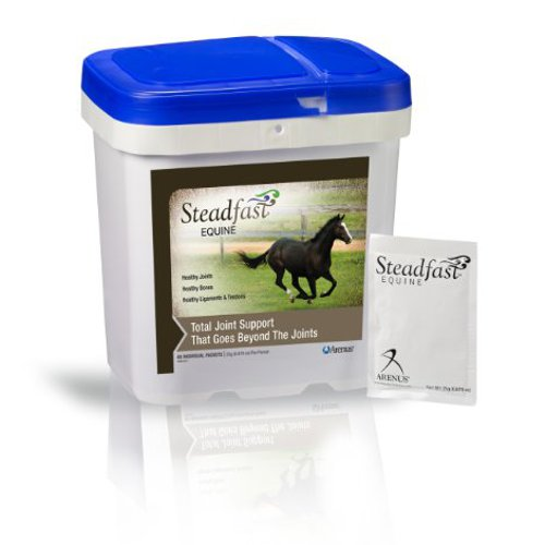 STEADFAST® Equine - 60 packets